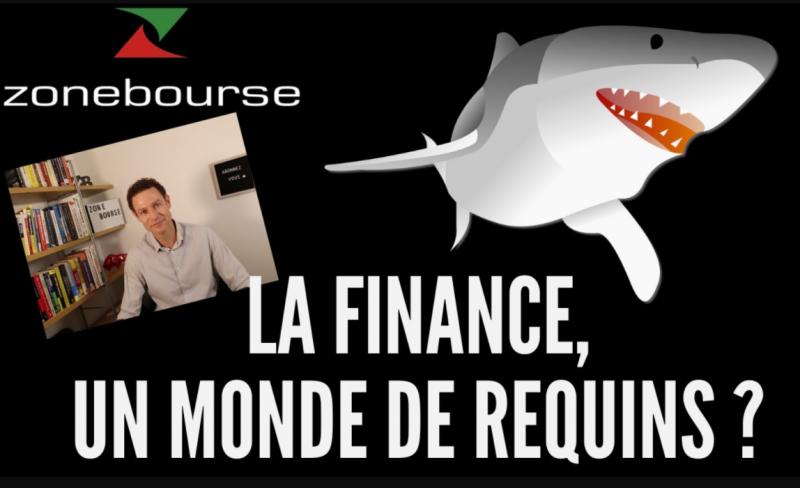 La finance, un monde de requins ?